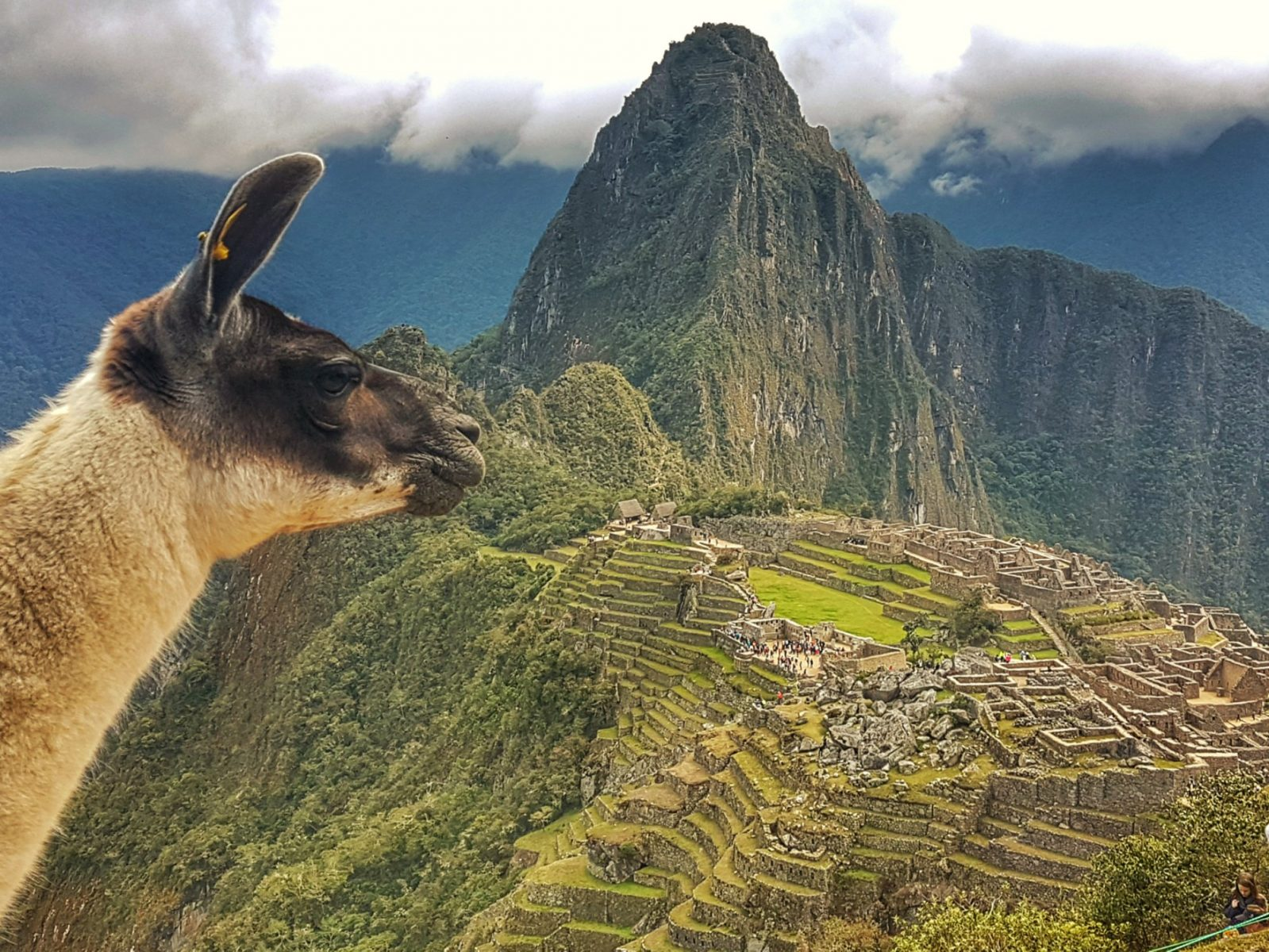 "<img src=""images/"" width=""800"" height=""600"" alt=""[object object] - wp image 1726154240 - Peru: Our DIY Hike To Machu Picchu"">"