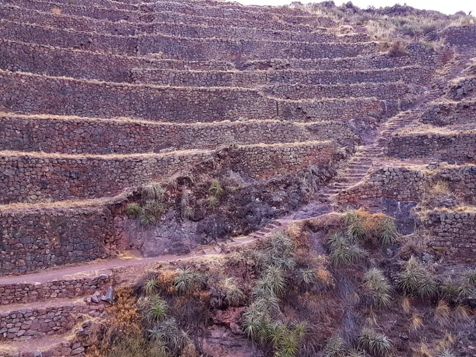 """<img src=""""images/"""" width=""""800"""" height=""""600"""" alt=""""sacred valley - 20171010 172512339962867 - Peru: Town Hopping The Sacred Valley"""">"""