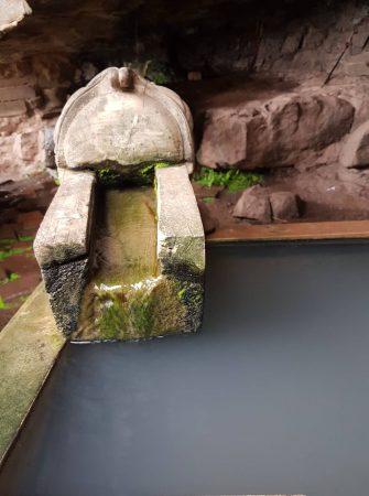 "vat phou <img src=""images/"" width=""800"" height=""600"" alt=""vat phou - Fountain of Youth 335x450 - Laos: Pakse, Vat Phou? Beautiful Ruins, That&#8217;s Vat!"">"